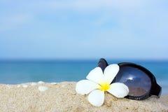okulary przeciwsłoneczne kwiatów Fotografia Stock
