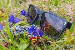 Okulary przeciwsłoneczni ai wildflowers na wiosny łące Zdjęcia Stock