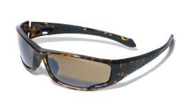 Okulary przeciwsłoneczni, brązów obiektywy obrazy royalty free
