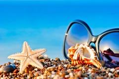 Okulary przeciwsłoneczni i morski życie na plaży obraz royalty free