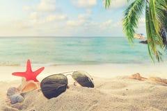 Okulary przeciwsłoneczni na piaskowatym w nadmorski lata plaży z rozgwiazdą, skorupami, koralem na sandbar i plamy morza tłem, Obraz Royalty Free