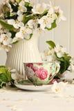 okwitnięć filiżanki kwiatu świeża herbata obrazy royalty free