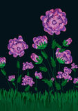 okwitnięcia eps śródpolna kwiatów noc Obrazy Stock