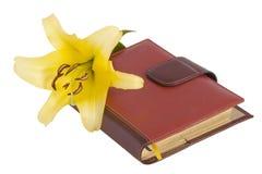 okwitnięcia kwiatu lelui notatnika kolor żółty Fotografia Stock