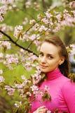 okwitnięcia stać na czele Sakura kobiety Obrazy Royalty Free