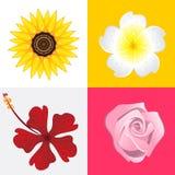 Okwitnięcie kwiat royalty ilustracja