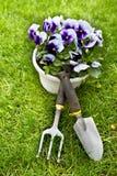 okwitnięcie kwiaty rozwidlają frontową ogrodnictwa rydla narzędzi kielnię Zdjęcia Stock
