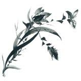 Okwitnięcie orchidea kwiaty ilustrację royalty ilustracja