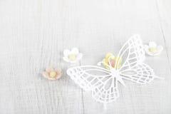 okwitnięcia motyli kwiatów papieru cukier trzy Obrazy Royalty Free