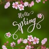 Okwitnięcie wiosny i drzewa literowanie Zdjęcia Stock