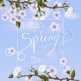 Okwitnięcie wiosny i drzewa literowanie Obraz Stock