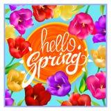 Olá! as tulipas colotful da mola florescem o fundo com rotulação e quadro branco Molde para o cartão de cumprimento no céu azul,  Fotos de Stock Royalty Free