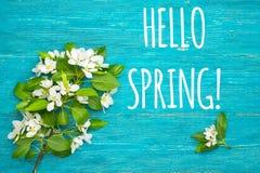 Olá! cartão da mola com flores da maçã foto de stock