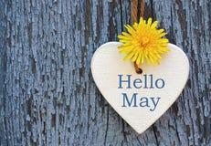 Olá! cartão de maio com a flor amarela branca decorativa do coração e do dente-de-leão no fundo de madeira azul velho Foto de Stock
