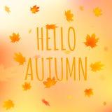 Olá! cartão do outono, ilustração do vetor com texto Imagens de Stock Royalty Free