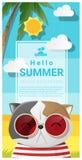 Olá! fundo do verão com os óculos de sol vestindo do gato ilustração do vetor