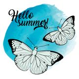 Olá! illustartion do verão com borboletas ilustração do vetor