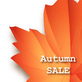 Olá! molde do inseto do outono de setembro com rotulação Folhas brilhantes da queda Cartaz, cartão, etiqueta, projeto da bandeira Imagens de Stock Royalty Free