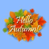 Olá! outono Fotografia de Stock