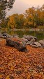 olá! outubro foto de stock