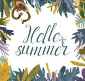 Olá! quadro da selva do verão Imagem de Stock