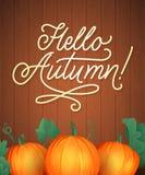 Olá! rotulação do outono Typography escrito mão Ilustração do vetor para sua água fresca de design foto de stock royalty free