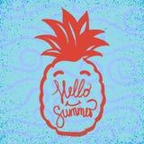 Olá! sinal do verão ilustração royalty free