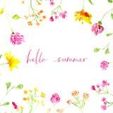 Olá! texto do verão com aquarela pintado à mão ilustração stock