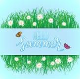 Olá! verão, voo da borboleta acima da grama com flores, mola Imagens de Stock