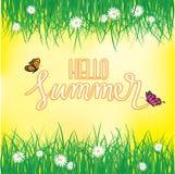 Olá! verão, voo da borboleta acima da grama com flores, mola Fotos de Stock Royalty Free