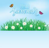 Olá! verão, voo da borboleta acima da grama com flores, mola Foto de Stock Royalty Free