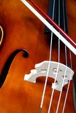 Olá! violoncelo Imagens de Stock Royalty Free