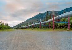 Oléoduc de l'Alaska en été Photo libre de droits