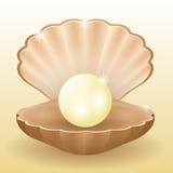 Olśniewająca biel perła w skorupie Obrazy Stock