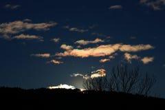Olśniewający słońce przez gałąź w Pyrenees, Francja Zdjęcie Stock