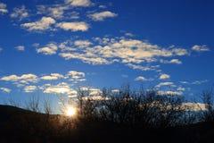 Olśniewający słońce przez gałąź w Pyrenees, Francja Fotografia Royalty Free