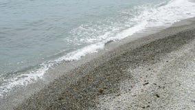 Ola oceánica, diversidad del ambiente, almacen de video