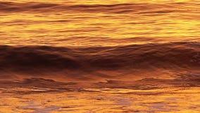 Ola oceánica que se rompe en la playa en la cámara lenta metrajes