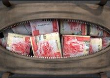 Olagligt kontant in en brun sjösäck royaltyfri illustrationer