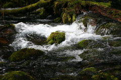 Olallie Creek Royalty Free Stock Photos