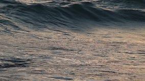 Olas oceánicas en la puesta del sol metrajes