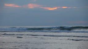 Olas oceánicas en la puesta del sol con las personas que practica surf almacen de metraje de vídeo