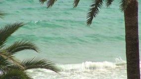 Olas oceánicas que se estrellan sobre la playa metrajes