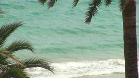 Olas oceánicas que se estrellan sobre la playa almacen de video