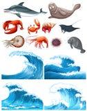 Olas oceánicas y animales de mar Imagen de archivo libre de regalías