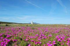 Olbia lighthouse Royalty Free Stock Images
