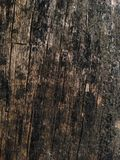 Old wood. Old wood texture stock photo