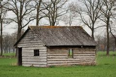 Old abandoned barn. Shed stable wood field grass farm stock photo