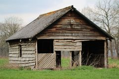 Old abandoned barn. Shed stable wood field grass farm stock image