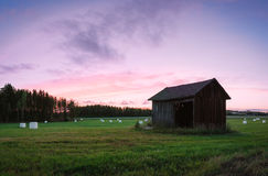 An old abandoned barn on summer evening Stock Image